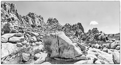 Joshua Tree Pano (Kansas Poetry (Patrick)) Tags: california joshuatree highdesert granite rockclimbing joshuatreenationalpark patrickemerson patricknancydocalifornia
