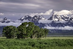 Cloudy sunrise in Grand Teton National Park (HDRob) Tags: grandtetonnationalpark clouds grandtetons landscape mountains trees