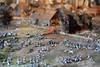 DSC_0690a (InsideMyShell) Tags: leipzig völkerschlachtdenkmal 2015 december5