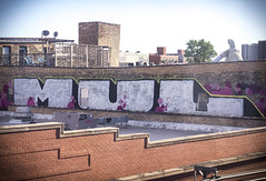 MUL (Rodosaw) Tags: street chicago art look photography graffiti you culture made u documentation mul subculture of
