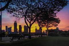 Relaxation (elenaleong) Tags: park skyline cityscape cyclist silhouettes joggers tgrhusunset elenaleong