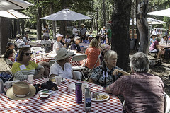 """CarpenterValley_AnneChadwick_Picnic • <a style=""""font-size:0.8em;"""" href=""""http://www.flickr.com/photos/65461142@N04/28142016916/"""" target=""""_blank"""">View on Flickr</a>"""