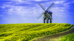 Chesterton (IAN GARDNER PHOTOGRAPHY) Tags: windmill mill chesterton rapeseed autofocus greatphotographers