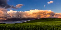 Collina (SDB79) Tags: molise grano ururi collina campo agricoltura primavera tramonto paesaggio luce nuvole rosso natura