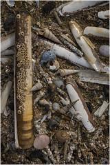 Southport beach (Pitheadgear) Tags: southport sefton merseyside lancashire northwest uk seaside resorts beaches beach