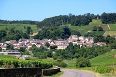 Village de Pernand-Vergelesses - Cte de Beaune (Charles.Louis) Tags: vigne vignoble village pernandvergelesses bourgogne ctedor cte beaune raisin cru vin viticulture