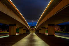 Commonwealth Bridge, Lake Burley Griffin (Theresa Hall (teniche)) Tags: australia canberra canberraaustralia commonwealthbridge lakeburleygriffin parliamenthouse teniche theresahall bridge dusk lake night outdoor outdoors water waterway national nationalcapital city capital capitol nationalcapitol