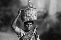 55 (Arvind Balaraman) Tags: tamil scripture vazhkaithunainalam thiruvalluvar thirukkural kural55