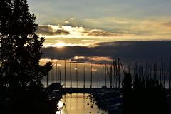 Dbut de journe (Diegojack) Tags: paysages lever soleil port petitbois morges ombres lumire contrejour nuages bateaux silhouettes