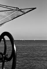 07 (Billo101) Tags: leica bw orange marina blackwhite an bn apo m summicron sem monochrom vela 75 asph bianconero senigallia fili