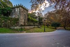 El Pazo de Castrelos II (Dovlado) Tags: park autumn trees sunset castelos ro river atardecer rboles otoo estanque vigo jardn lagares castrelospark rolagares