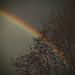 rainbow over childers wood