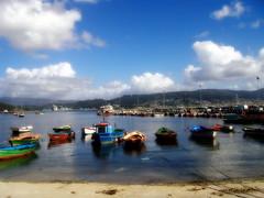 Barquiñas en Combarro (tunante80) Tags: españa mar spain galicia galiza pontevedra oceano combarro atlantico turimo horreos