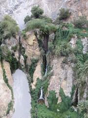Colca Canyon-58