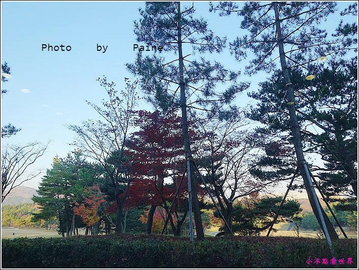 慶州The Suite Hotel (28).JPG