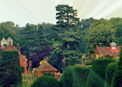 The Feeling of Belonging (Dazzygidds) Tags: nationaltrust warwickshire beautifullighting packwoodhousegardens yewtreetopiary