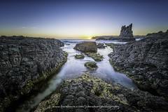 Cathedral Rock Sunrise (John A Hunt Photography) Tags: ocean morning sunrise australia nsw newsouthwales kiama cathedralrocks nikond600 kiamadowns 1635mmf4