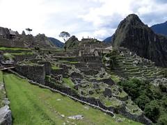 Machu Picchu-212