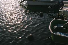 Saigasaki Fishing Port (miho's dad) Tags: contaxrx carlzeissplanart1750 fujicolorc200