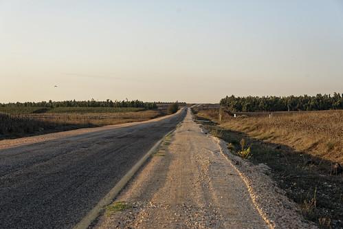Route 98 Golan
