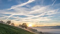 Nebelstimmung auf dem Santenberg (priska777) Tags: sonnenaufgang nebelmeer nebelstimmung santenberg