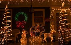 porch (greenelent) Tags: christmas xmas nyc streets brooklyn night lights christmaslights photoaday 365