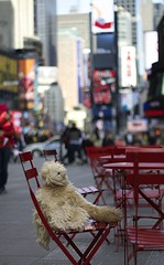 Times square (jaorr1) Tags: new york square chair teddy busy times