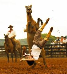 Trocando de ponta (shumpei_sano_exp9) Tags: brazil horses horse southamerica brasil caballo cheval caballos bravo cavalos pferde cavalli cavallo cavalo gauchos pferd riograndedosul pampa campanha brsil chevaux gaucho amricadosul bag fronteira caduta gacho amriquedusud gachos sudamrica suramrica amricadelsur firstquality sdamerika littlestories jineteada americadelsud gineteada americameridionale picswithsoul liederinbildern