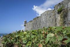 El Morro, Old San Juan (joe.tolley) Tags: oldsanjuan puertorico elmorro carnivalcruise carnivalconquest joetolley kristytolley