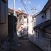 渡鹿野島 画像9