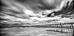 image (Blobby1944) Tags: white black beach south australia