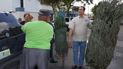 City of Sweetwater Christmas Tree Giveaway (57) (teamlagatita) Tags: christmas tree la mayor jose el giveaway gatita diaz zol 1067fm
