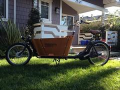 Babboe City Cargo Bike at Flying Pigeon LA (ubrayj02) Tags: cargobike bakfiets bakfietsen bikela flyingpigeonla babboe