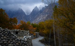 Fall in Passu, Hunza (Mobeen_Ansari (in Seattle, LA, TX and DC July-Augu) Tags: november autumn pakistan mountains fall leaves landscape nikon village earth north wide middle hunza gilgit baltistan 1024mm d7000 gilgitbaltistan nikond7000