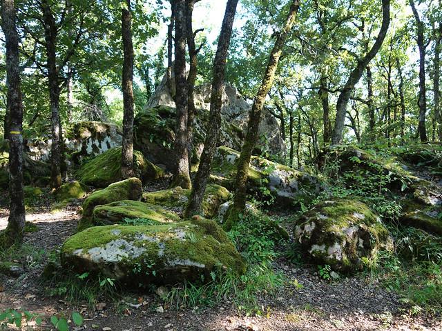Le Cromlech de Roquebert - Prayssac - Lot - Septemebre 2014 - 03