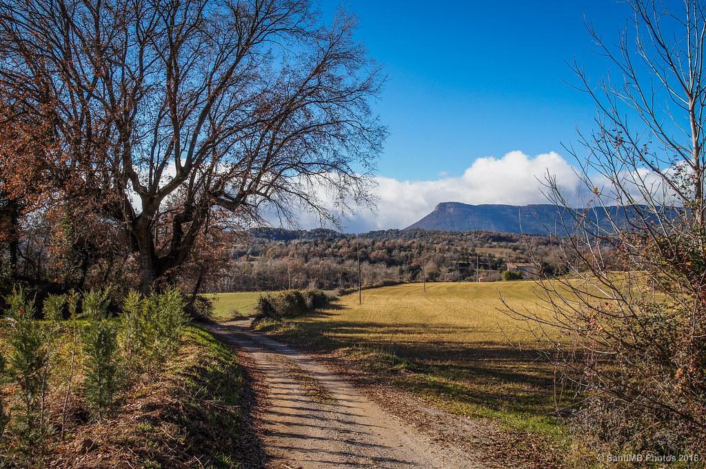 Camino a Cal Bep Vell