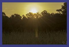 Sunrise in Marietta Ga (kudzu 70) Tags: atlanta sunrise georgia nationalpark marietta kennesawmountain