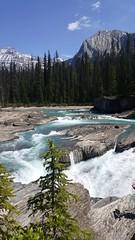 Stream - Johnston Canyon (jo1_achee) Tags: alberta rivers banff streams yoho johnstoncanyon