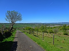 Me And My Trees (Bricheno) Tags: road scotland escocia szkocja schottland scozia renfrewshire cosse howwood whittliemuir  esccia   bricheno scoia