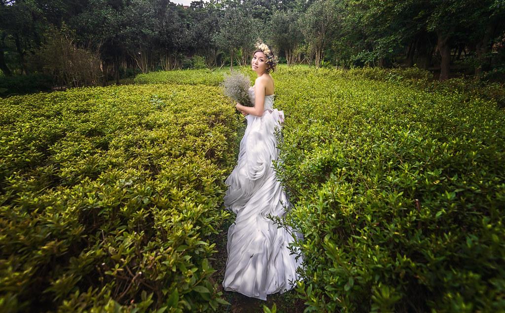 陽明山花卉試驗中心婚紗,慕尼黑幸福影像,婚攝巴西龜