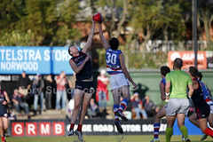 Norwood v Central District (Cory') Tags: football adelaide southaustralia bulldogs australianrulesfootball centraldistrict sanfl redlegs centraldistrictfootballclub norwoodfootballclub theparadenorwood