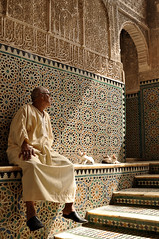 in the afternoon light of  Bou Inania madrasa, Fez, Morocco (magbrinik) Tags: cats cat islam beautifullight morocco fez marocco marrakesh architettura fes islamicarchitecture moschea medersa travelphotography islamicdecoration scuolacoranica religiousplace portraiturephotography architetturaislamica arabeschi mosque bouinaniamadrasa florealdecore