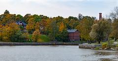 (Jori Samonen) Tags: autumn trees fall water buildings finland helsinki vanhakaupunki