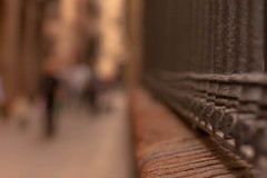 Eslabones de mi vida - Links of my life (Nathalie Le Bris) Tags: barcelona blur fence dof bokeh song hff