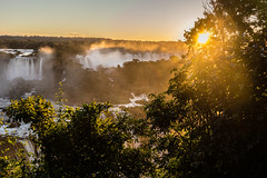 Golden Sunset (*Capture the Moment*) Tags: trees sunset brazil sun mist fog sonnenuntergang brasilien jungle waterfalls sonne bume goldenhour wetter iguacu landschaften urwald 2016 fozdeiguazu wasserflle goldenestunde wassernebel sonynex7 sonye18200mmoss