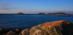 7D2L6670 (ndall) Tags: landscape scilly tresco