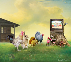Saturday Morning Matinee (rubyblossom.) Tags: old flowers building tree rabbit bird chicken television animals barn fly farm watch shed chick trunk toadstool hen macdonald no2 cockeral 2016 squrirrel rubyblossom rubystreasures miichallenge