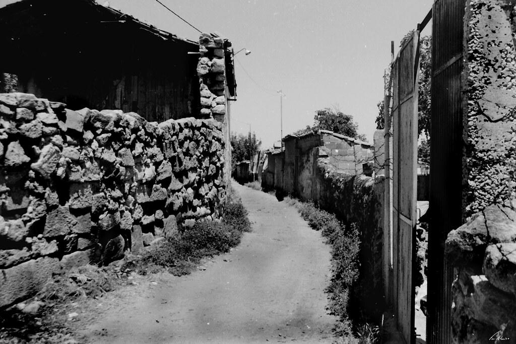 1600-canelha-longras (4)