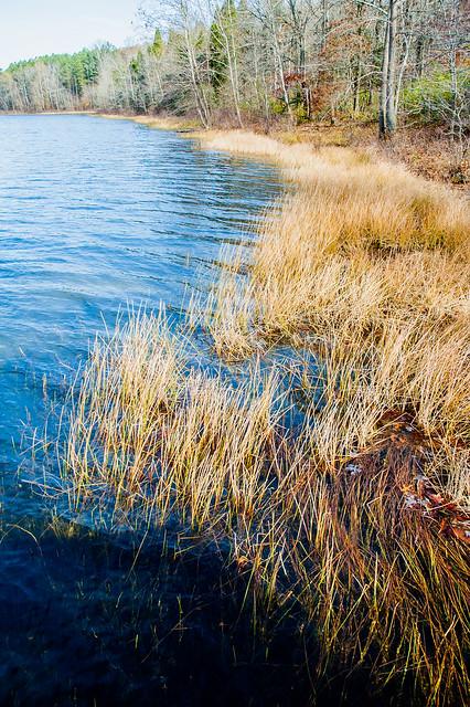 Celina Lake - November 8, 2014