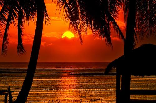 Landscape, Rote Island